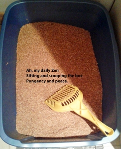 Litter box haiku