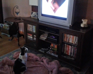 Luna watching TV Julie Andrews love scene Torn Curtain